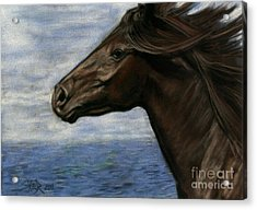 Acrylic Print featuring the painting Run Free by Sheri Gordon