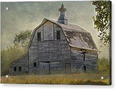Rural America IIi Acrylic Print by Christine Belt