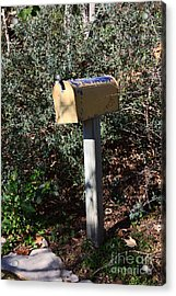 Rural Mailbox With Fading Yellow And Blue Paint Acrylic Print by Louise Heusinkveld