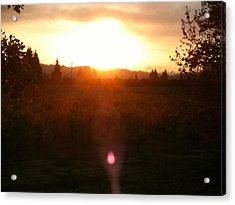 Russian River Sunrise Acrylic Print