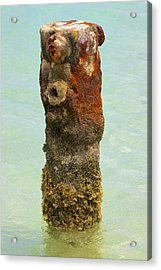 Rusted Dock Pier Of The Caribbean Vii Acrylic Print