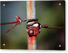 Rusted Fence Post 2 Acrylic Print