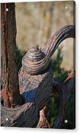 Rusted Hinge Acrylic Print by Dickon Thompson