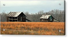 Rustic Illinois Acrylic Print by Marty Koch