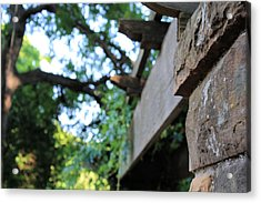 Rustic Acrylic Print by Lynnette Johns