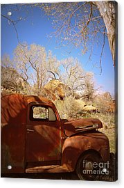 Acrylic Print featuring the photograph Rusty Beauty by Tanya  Searcy