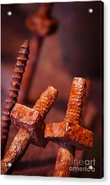 Rusty Screws Acrylic Print by Carlos Caetano
