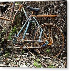 Rusty Wheel Of Bicycle Acrylic Print by Chavalit Kamolthamanon