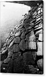 S Curve Acrylic Print by Andrew Kubica