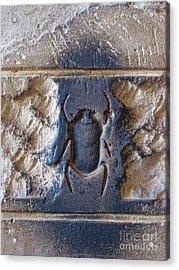 Sacred Scarab. Acrylic Print by JSM Fine Arts John Malone