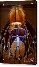 Saddles Acrylic Print by Elena Elisseeva
