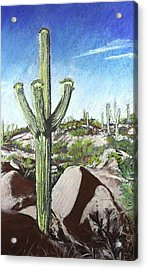 Acrylic Print featuring the painting Saguaro National Park by Drusilla Montemayor