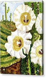 Saguaro Spring Acrylic Print