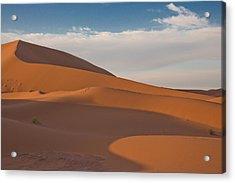 Sahara Sanddunes Acrylic Print by Leo Keijzer