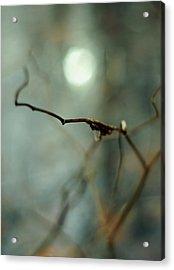 Sail To The Moon Acrylic Print