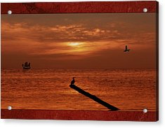 Sailing Into The Sunset Acrylic Print by Tom York Images