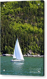 Acrylic Print featuring the photograph Sailing The Wilderness by Laurinda Bowling