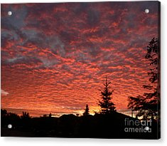 Sailor's Delight Acrylic Print by Laurel Best
