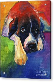 Saint Bernard Dog Colorful Portrait Painting Print Acrylic Print by Svetlana Novikova