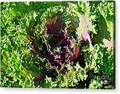 Salad Maker Acrylic Print by Susan Herber