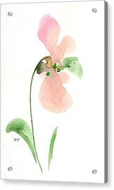 Salmon Flower Acrylic Print