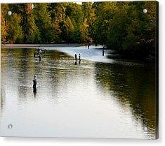 Salmon Hunting Skok Style Acrylic Print by Mark Bowmer