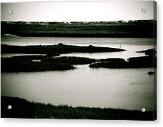 Salt Marsh Acrylic Print by Jez C Self