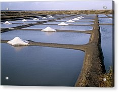 Salt Pans Acrylic Print by Veronique Leplat