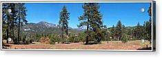 San Bernardino Forest Vista Acrylic Print by Glenn McCarthy Art and Photography