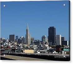 San Francisco Acrylic Print by Serena Ballard