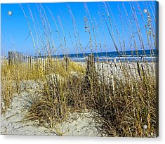 Sand Dunes Acrylic Print by Eve Spring