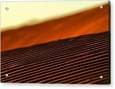 Sand Rows Acrylic Print