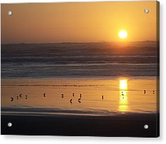 Acrylic Print featuring the photograph Sandpipers At Sunset by Peter Mooyman