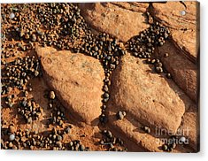 Sandstone And Pebbles Acrylic Print by Gary Whitton