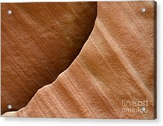 Sandstone Detail Acrylic Print by Bob Christopher