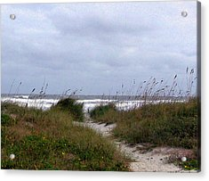 Sandy Path To The Beach Acrylic Print by Patricia Taylor