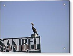 Sanibel Acrylic Print