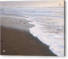 Sans Footprints Acrylic Print