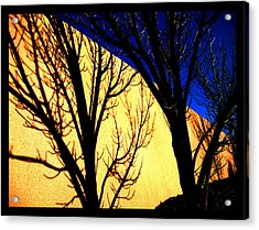 Acrylic Print featuring the photograph Santa Fe Afternoon by Susanne Still