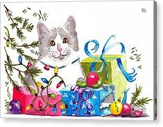 Santa's Helper Acrylic Print by Terry Taylor