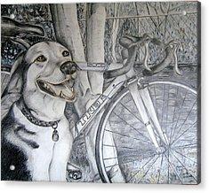 Sapphire And Bike Acrylic Print by HHolly Bazmi
