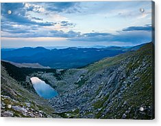 Sapphire In The Wilderness Acrylic Print by Adam Pender
