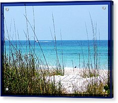 Sarasota Bay At Longboat Beach Acrylic Print by Ginny Schmidt