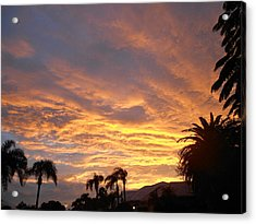 Acrylic Print featuring the photograph Sarasota Sunset by Sheila Silverstein