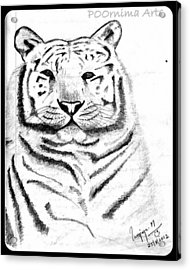 Save Tigers Acrylic Print by Poornima M