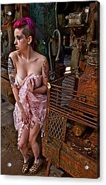 Acrylic Print featuring the photograph Scared by Alice Gipson