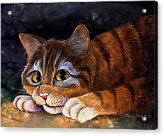 Scaredy Cat Acrylic Print by Sherry Shipley
