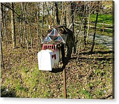Acrylic Print featuring the photograph Scary Mailbox 3 by Sherman Perry