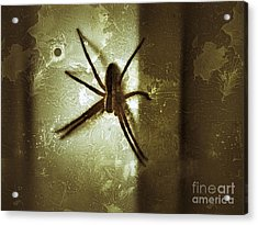 Scary Spider Acrylic Print by Christy Bruna