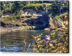 Scene At Boiler Bay Acrylic Print by Chris Anderson